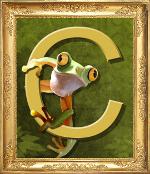 logo-cadre-cocy